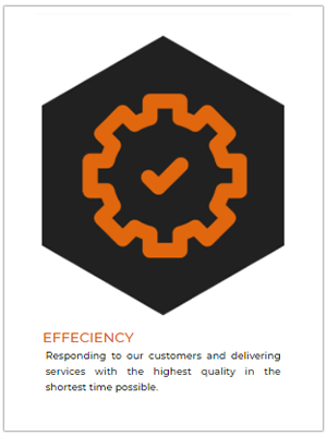 Efficiency 14-01-2021